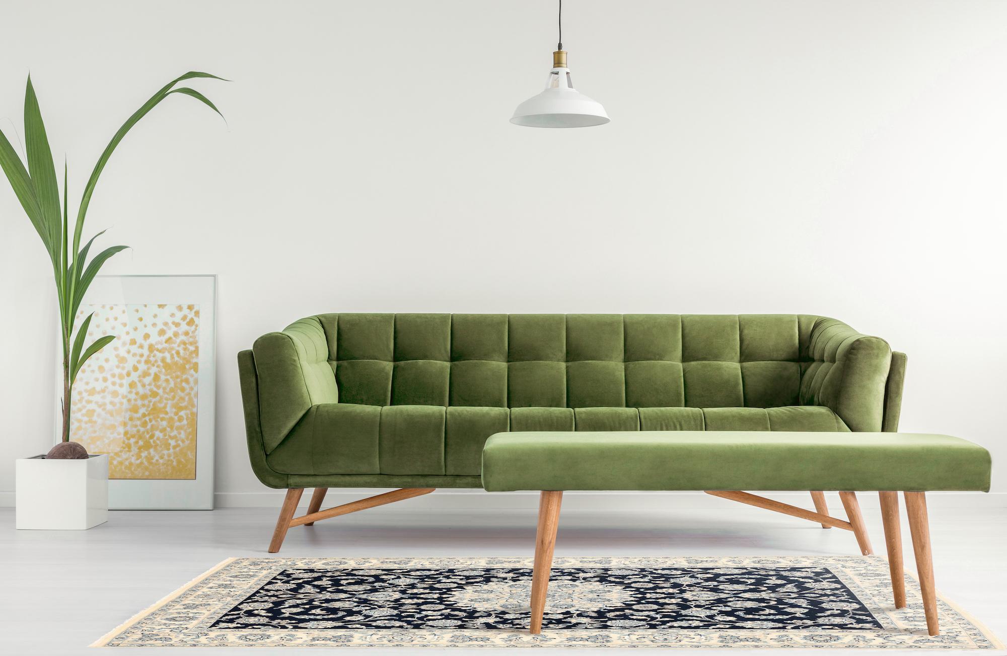 tappeto persiano sotto il divano con tavolino e pianta